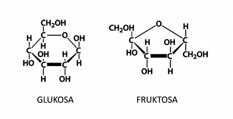 apa-bedanya-sukrosa-glukosa-dan-fruktosa